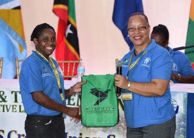 CICL Partners with OECS Summit #18